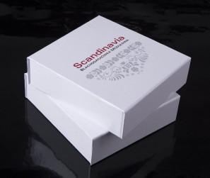 Pudełko z magnesem